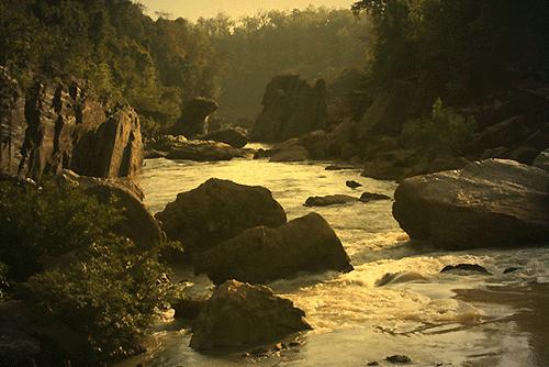 Dandakaranya Forest|Awesome India