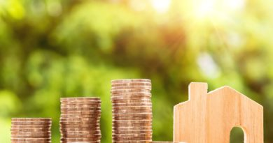 Home Loan Guarantor