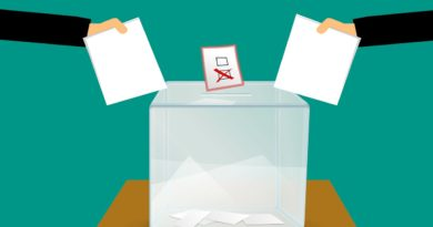 Bandwagon Effect: Do Opinion/Exit Polls Influence a Voter's Behaviour?