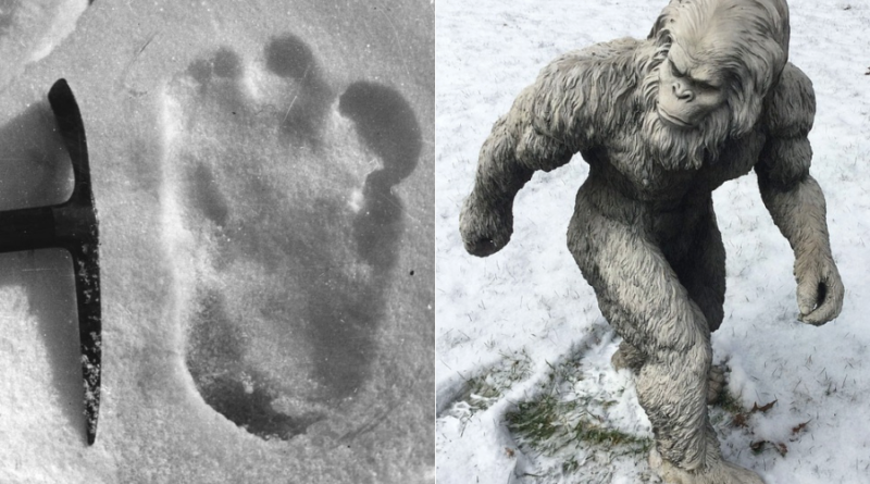 Yeti Footprints