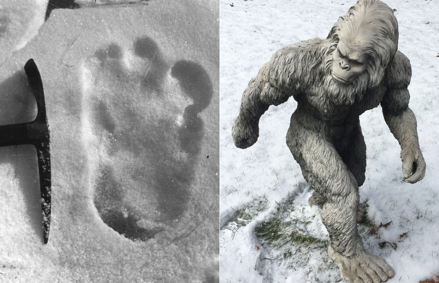 Indian Army Spots Footprints of Mythological Giant Yeti during Himalaya Expedition