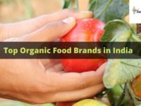 Top Organic Food Brands in India