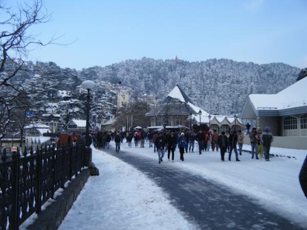 Shimla to Manali Car Road Trips