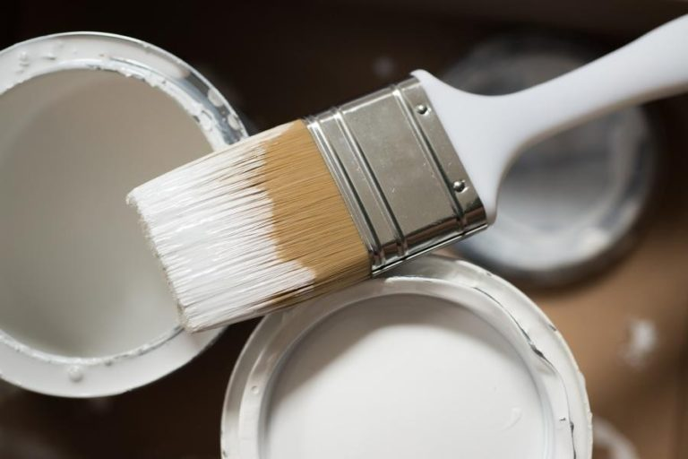 home ceiling paint