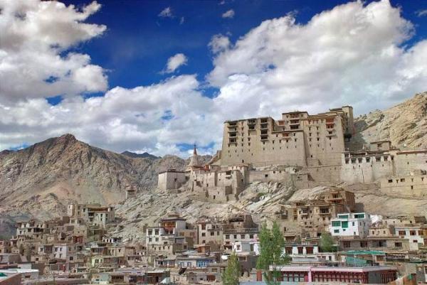 Royal Leh palace